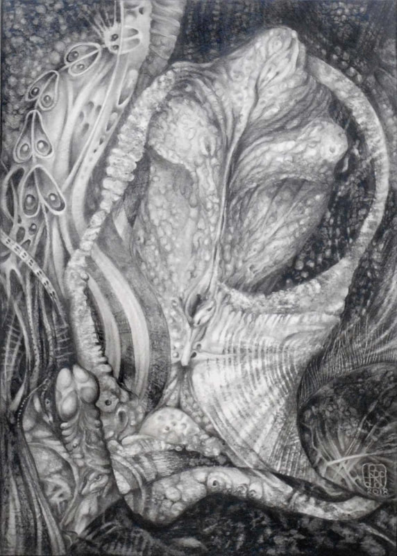THE FERNAL ALIEN PLANT   graphite on paper - 2018